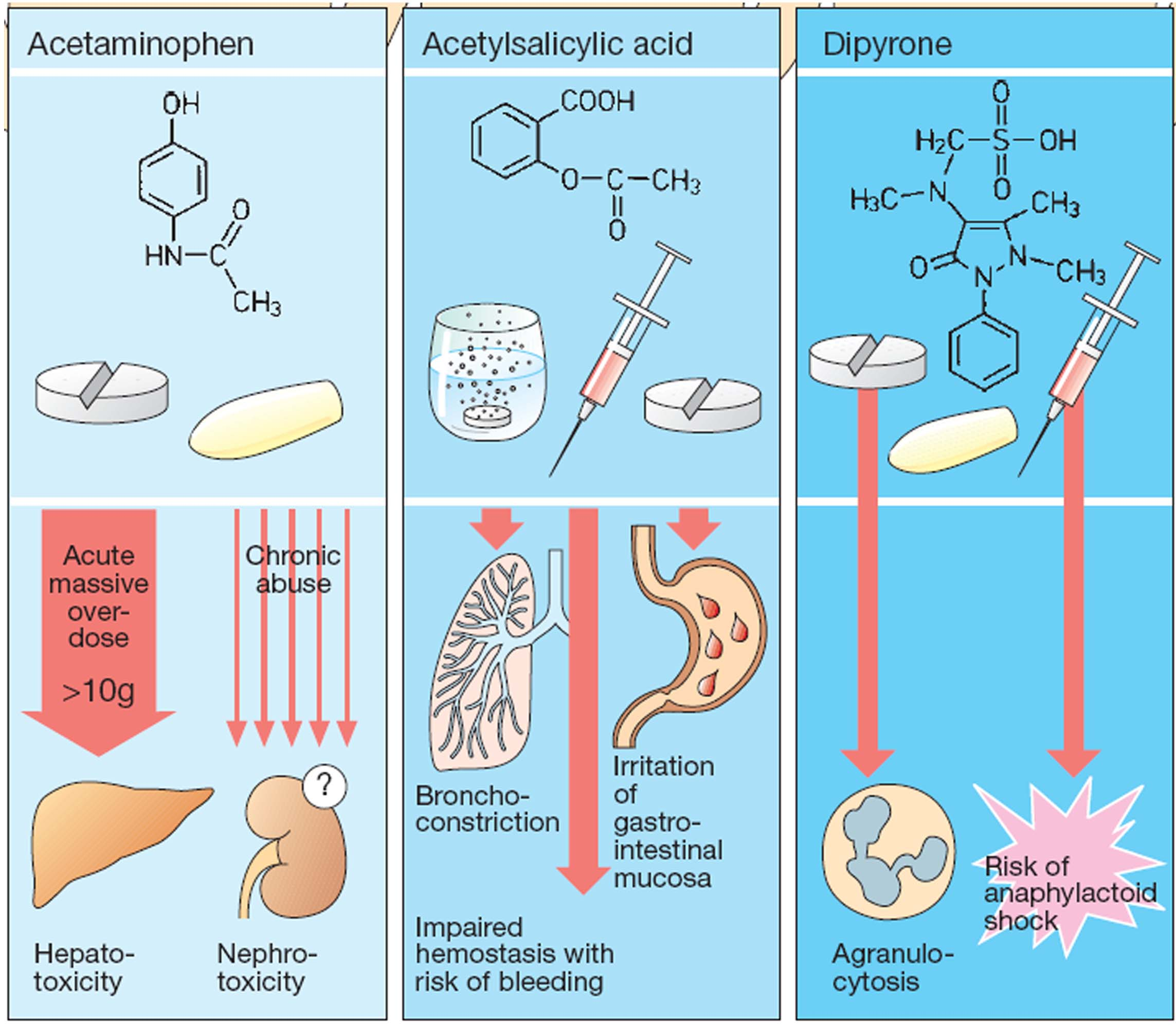 action of steroid and nonsteroid hormones